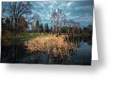 Trees In A Fog On A Background Of The River In Summer Morning  Greeting Card