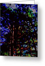 Trees In Abstract 3 Greeting Card