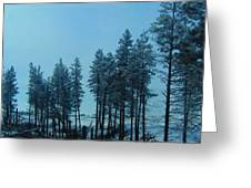 Trees In Northwest Greeting Card