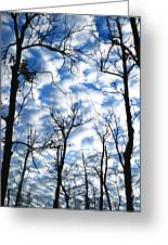 Trees In The Sky Greeting Card
