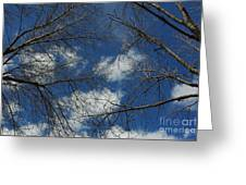 Trees In The Spring With Clouds Greeting Card
