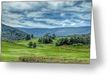 Trees In The Valley Greeting Card