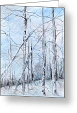 Trees In Winter Snow Greeting Card