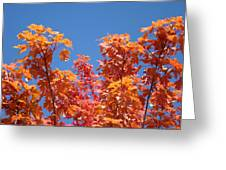 Trees Landscape Art Print Fall Tree Leaves Baslee Troutman Greeting Card