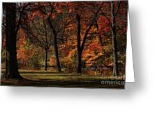 Trees Of Autumn Greeting Card