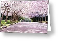 Trees Of Pink Greeting Card