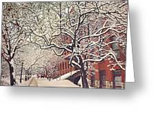 Trees On Franklin Greeting Card
