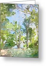 Trees On Ski Island, Banana River, Cape Canaveral, Fl. Greeting Card