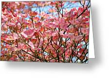 Trees Pink Spring Dogwood Flowers Baslee Troutman Greeting Card