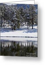 Trees Reflecting In Duck Pond In Colorado Snow Greeting Card