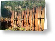 Trees Reflecting Greeting Card