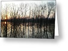 Trees Reflecting On The Water Greeting Card