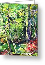 Trees Greeting Card by Robin Miller-Bookhout