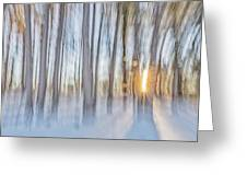 Trees, Snow And Golden Light Abstract Greeting Card