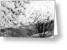 Tree's Spirit Greeting Card