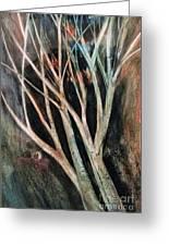 Trees That Tumble Greeting Card