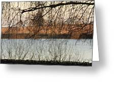 Trees With A Reflection Greeting Card