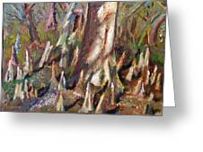 Trees With Knees Greeting Card