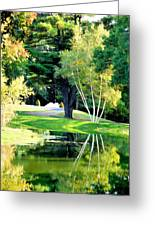 Trees With Mirror Lake 2 Greeting Card