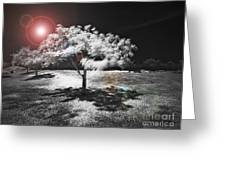 Trees With Science Fiction Sky 91774031 Greeting Card