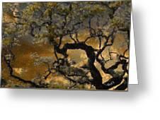 Treetop Sunset Greeting Card