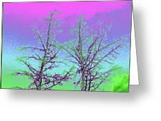 Treetops 5 Greeting Card