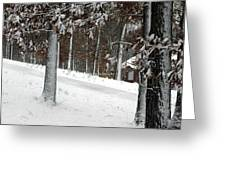 Tress Of Snow Greeting Card
