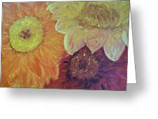Tri Colored Daisies Greeting Card