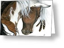 Tri Colored Pinto Horse Greeting Card