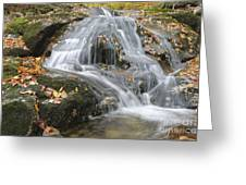 Tributary Of Lost River - Woodstock New Hampshire  Greeting Card