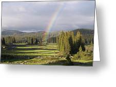 Trickle Park Rainbow Greeting Card