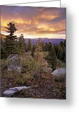 Trinity Mountains Greeting Card