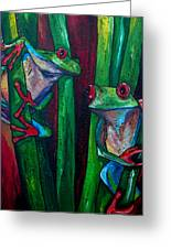 Trinity Of Tree Frogs Greeting Card