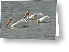 Trio Pelicans Greeting Card