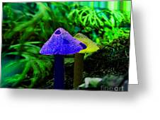 Trippy Shroom Greeting Card