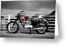 Triumph Trophy Tr6 1962 Greeting Card