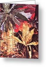 Tropic Blaze Greeting Card