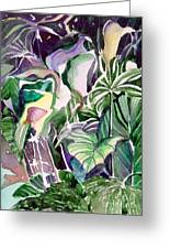 Tropic Lights Greeting Card