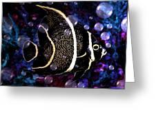 Tropical Angel Fish Greeting Card