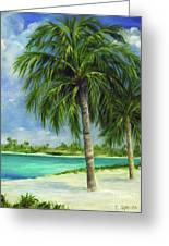 Tropical Beach Two Greeting Card