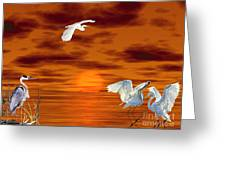 Tropical Birds And Sunset Greeting Card