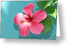 Tropical Bloom Greeting Card