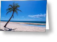 Tropical Blue Skies And White Sand Beaches Greeting Card