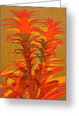 Syncopated Botanicals In Tangerine Orange Greeting Card