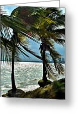 Tropical Breeze Greeting Card