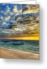 Tropical Dawn Greeting Card