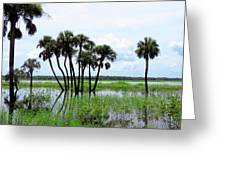 Tropical Flooding Greeting Card