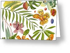 Tropical Flora Greeting Card