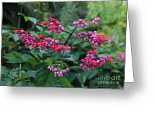 Tropical Flower Flow Greeting Card