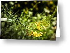 Tropical Flowers 7 Greeting Card